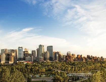 CPA Alberta Member Management System