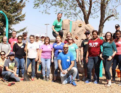 Give back during November Volunteer Days