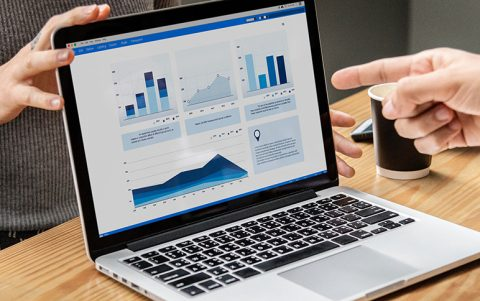 Auditors using data analytics: an inside look